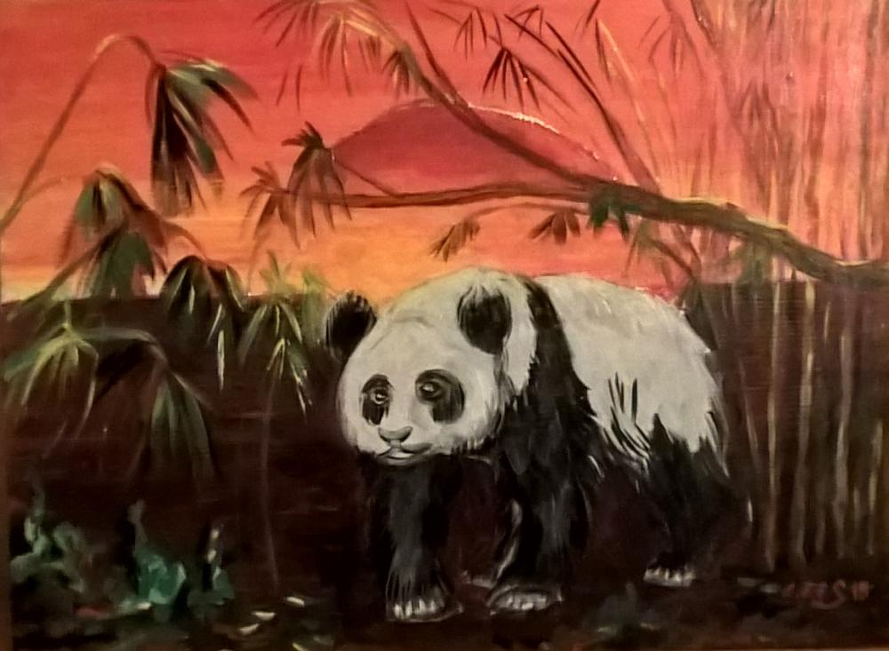 Panda aus der Oudemuragie-Serie Januar 2019 in RSA